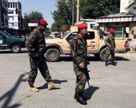 Several Afghan soldiers killed in suicide blast in Helmand