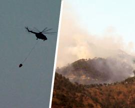 Forest fire breaks on Vaishno Devi route