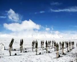 International Yoga Day: ITBP personnel do 'surya namaskar' at 18,000 ft